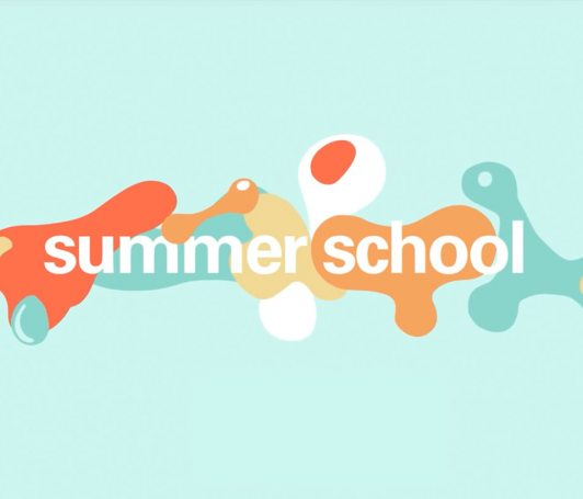 IED Summer School